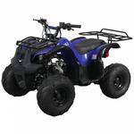 Детский / подростковый бензиновый квадроцикл Spark SP 110-3 (Синий) 1