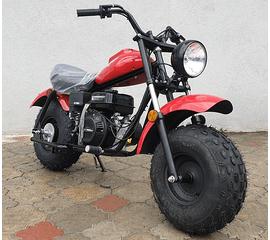 Мотоцикл Mini Bike Linhai MB200 (Красный) 1