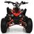 Детский (подростковый) квадроцикл PROFI HB-EATV1500Q2-2 3