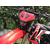 Motoleader ML250CRF (Красный) 2